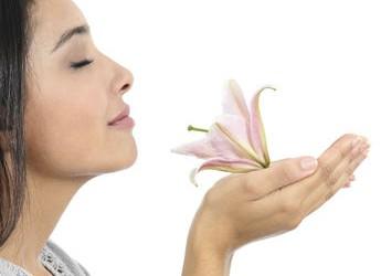 ces-odeurs-qui-nous-soignent